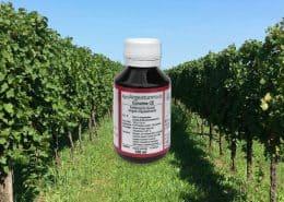 AgroArgentum ® Endo - Fertilizzanti uso biologico