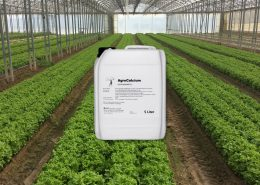 AgroCalcium ®